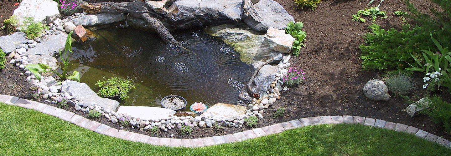 fish ponds and waterfeature maintenance victoria bc